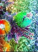 vibrantflowers1